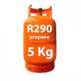 OPTION GAZ POUR MEUBLE FRIGORIFIQUE